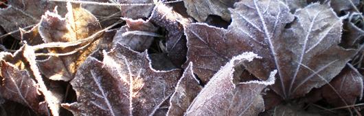 Frostige Jahreszeit