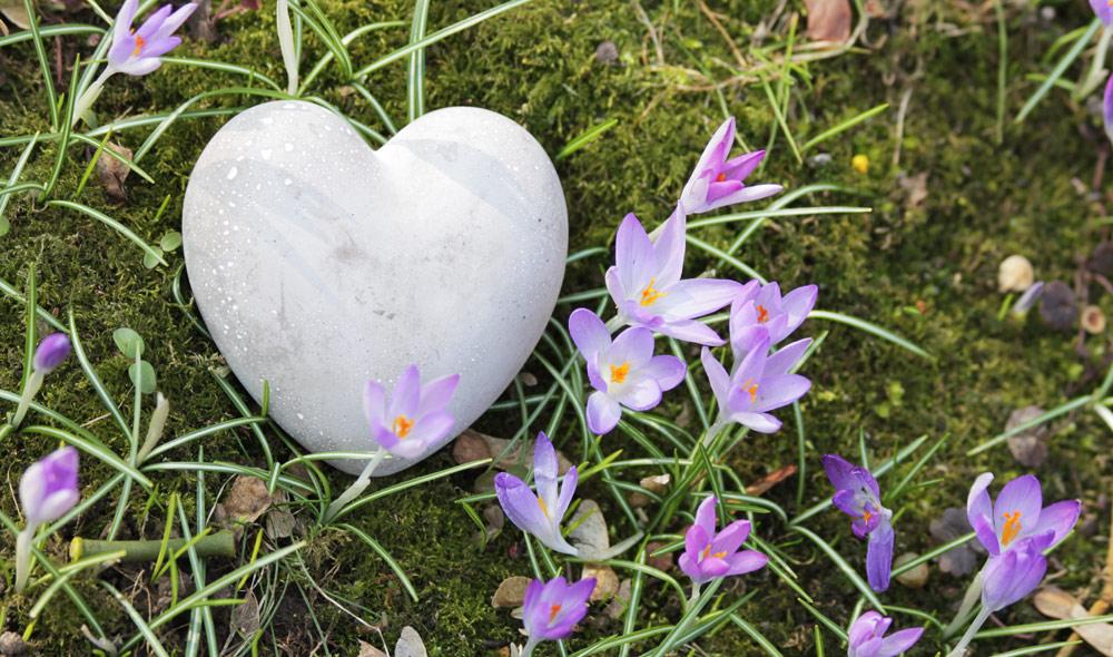 Schönen Muttertag! Herz in Krokussen | senSEASONal