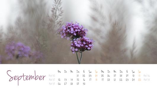 """Kalenderblatt """"Kleine Details"""" - September 2016"""